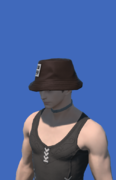 Model-Eastern Lord Errant's Hat-Male-Hyur.png