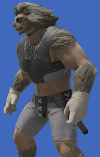 Model-Hempen Shortgloves-Male-Hrothgar.png