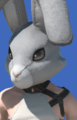 Model-Rabbit Head-Male-Miqote.png