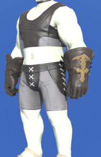 Model-Gyuki Leather Gloves of Gathering-Male-Roe.png