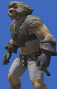 Model-Sharlayan Philosopher's Gloves-Male-Hrothgar.png