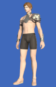 Model-Light Steel Galerus-Male-Hyur.png