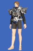Model-Tarnished Body of the Silver Wolf-Male-Hyur.png