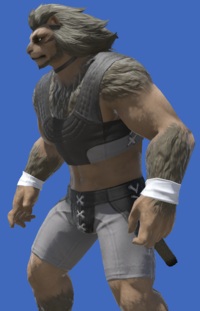 Model-Bunny Chief Loops-Male-Hrothgar.png