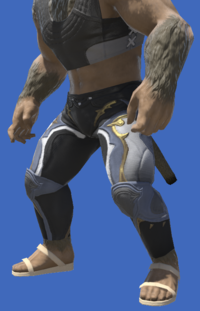 Model-Wild Rose Breeches-Male-Hrothgar.png