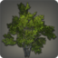 Shroud Broadleaf Icon.png