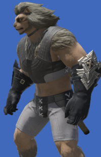Model-Augmented Shire Philosopher's Gloves-Male-Hrothgar.png