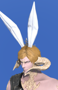 Model-Bunny Crown-Male-AuRa.png