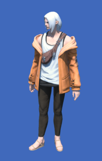Model-Casual Jacket-Male-Elezen.png