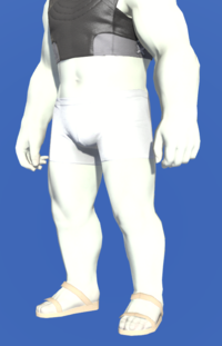 Model-Lord's Drawers (White)-Male-Roe.png
