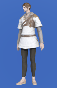 Model-Aetherial Ranger's Tunic-Male-Elezen.png