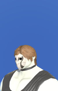 Model-Ash Mask-Male-Roe.png
