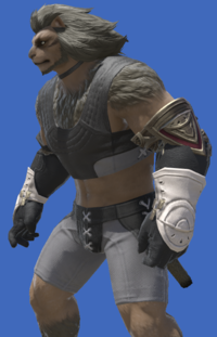 Model-Prototype Midan Gloves of Maiming-Male-Hrothgar.png
