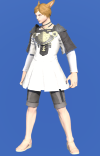 Model-Aetherial Cotton Tabard-Male-Miqote.png