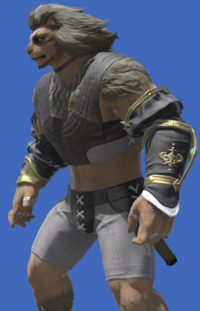 Model-Antiquated Welkin Half Sleeves-Male-Hrothgar.png