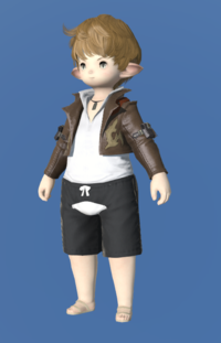 Model-Anemos Jacket-Male-Lalafell.png