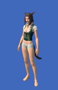 Model-Dirndl's Bodice-Female-Miqote.png