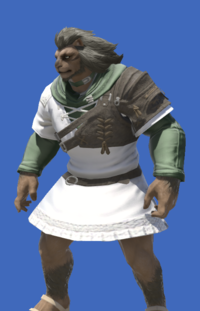 Model-Toxotes Tunic-Male-Hrothgar.png