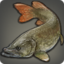 Northern Pike Icon.png