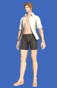 Model-Endless Summer Top-Male-Hyur.png