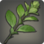 Countess Tea Leaves Icon.png
