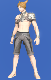 Model-Light Steel Galerus-Male-Miqote.png