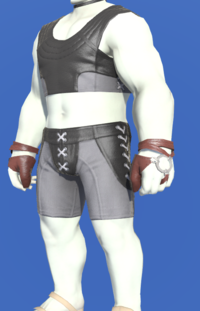 Model-Storm Private's Ringbands-Male-Roe.png