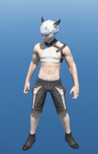 Model-Butler's Gaiters-Male-Miqote.png