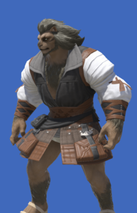 Model-Ramie Doublet of Crafting-Male-Hrothgar.png