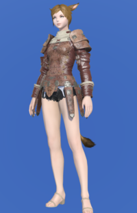 Model-Storm Private's Jacket-Female-Miqote.png