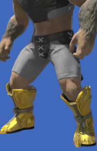 Model-Tarnished Feet of the Golden Wolf-Male-Hrothgar.png