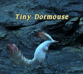 Tiny Dormouse.png