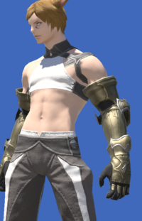 Model-Bluespirit Gauntlets of Fending-Male-Miqote.png