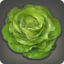 Robe Lettuce Icon.png