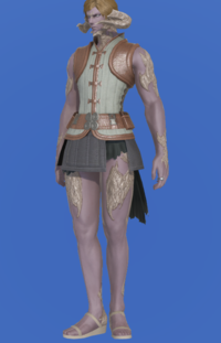 Model-Velveteen Doublet Vest of Crafting-Male-AuRa.png