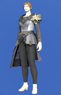 Model-Brand-new Tabard-Female-Roe.png