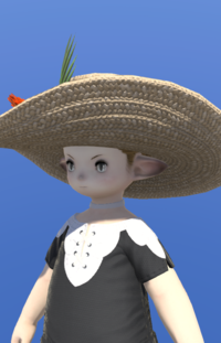 Model-Gold Roselle Capeline-Male-Lalafell.png