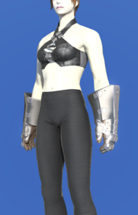 Model-Heavy Iron Gauntlets-Female-Roe.png