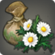 Daisy Seeds Icon.png