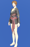 Model-Oasis Tunic-Female-Hyur.png