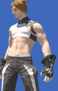 Model-The Forgiven's Gloves of Healing-Male-Miqote.png