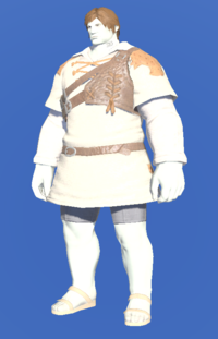 Model-Aetherial Cotton Trapper's Tunic-Male-Roe.png