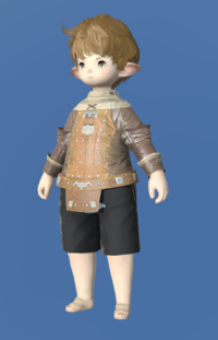 Model-Plundered Jacket-Male-Lalafell.png