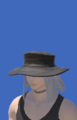 Model-Voeburtite Hat of Casting-Male-Hyur.png