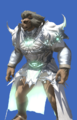 Model-Elemental Armor of Maiming +1-Male-Hrothgar.png
