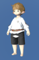 Model-Spring Shirt-Male-Lalafell.png