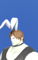 Model-Bunny Chief Crown-Male-Roe.png