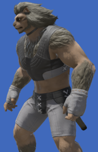 Model-Flame Private's Halfgloves-Male-Hrothgar.png