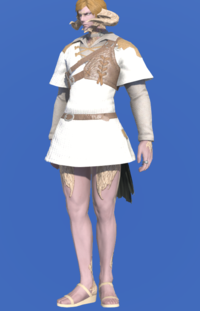 Model-Aetherial Ranger's Tunic-Male-AuRa.png