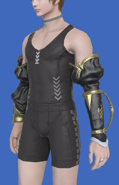 Model-Antiquated Welkin Half Sleeves-Male-Hyur.png
